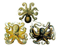 Waterproof Temporary Fake Tattoo Stickers Yellow Brown Squid Octopus Unique