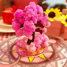 Kids Magic Growing Crystal Bonsai Tree Science Educational Stocking Filler Toys