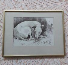 More details for framed and glazed whippet dog print