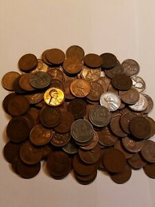 (1) Pound Lb Bag of Indian & Lincoln Wheat Pennies Cents Estate Coin Hoard