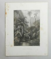 """Antique Australian Engraving """" WOOLONGONG """"  by S Prout For  Edwin C Booth 1874"""