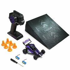 2Wd Rc Racing Car Road Vehicle 2.4G Remote Control Buggy Crawler Purple Speed