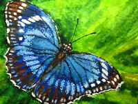 Painting Blue Butterfly Insect Flowers Green Leaf Nature ACEO Art