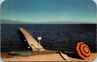 Postcard CA Greetings from Salton Sea Imperial County Calif. SPEED Boat Chrome