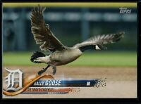 2018 Topps Update SSP #US107 Rally Goose 5x7 RC Rookie Image #d 20/49
