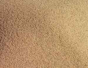 Sand Blasting Walnut Shell Cabinet Tumbler Polisher Grit Media 16/5 Mesh 1kg