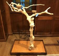 Java Tree Parrot Bird Stand 56� Tall