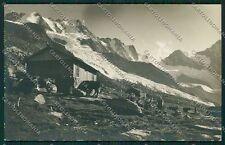 Aosta Cogne Ghiacciaio Foto cartolina EE7242