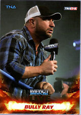 TNA Bully Ray #10 2013 Impact Wrestling LIVE GOLD Parallel Card SN 44 of 50