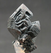 4687 Hämatit hematite Pseudomorphose Magnetit Argentinien Specimen mineraux