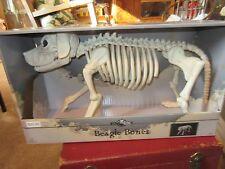 crazy bonez beagle bonez 18181