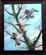 Phillip Crowe Greenwood Traffic Jam Duck Print-Framed 24.5 x 29 SN
