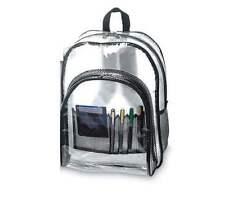 Standard Transparent / Clear Backpack in Black trim & strap