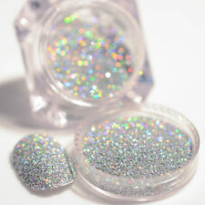 2g/Box Nail Glitter Dust Powder Holographic Laser Gorgeous Silver Manicure Tips