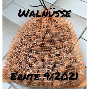 Walnüsse  Walnuss Nuss Ernte 09/2021 im Raschelsack