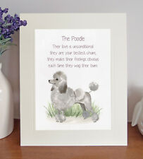Poodle BESTEST CHUM Novelty Dog Poem Lovely 8 x 10 Picture/10x8 Print Fun Gift