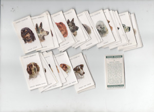 cigarette cards dogs heads  by Biegel 1930s unissued full set