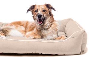 Dog Gone Smart Lounger Bed Sand 66x61cm