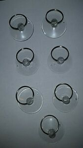 """SMALL CLEAR SUCTION CUPS WITH KEY RING 1  1/4 """"  SET OF TWENTY (20)"""