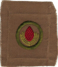 BOY SCOUT FORESTRY #4 SQUARE TEENS MERIT BADGE (TYPE AA)