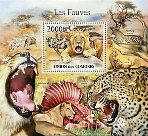 COMORO ISLANDS WILDCAT STAMPS SS 2011 MNH WILD ANIMALS LION LEOPARD WILDLIFE