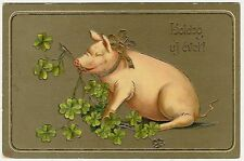 Pigs, Pig with Clovers, beautiful old postcard