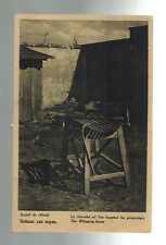 Mint 1940s Auschwitz Concentration Camp real picture Postcard Whipping Horse