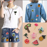 8X Cute Embroidered Sew Iron on Patch Badge Fruit Pineapple Bag Fabric Applique