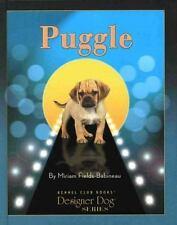 Puggle (Designer Dog)