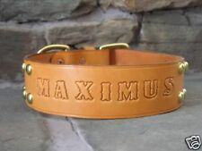 "Leather Dog Custom Collar Personalized 2"" Wide w/ Spots"