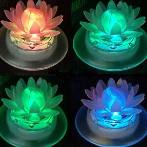 Schwimmende Frosch / Lotus Solarlampe der Hingucker im Garten, wasserdicht