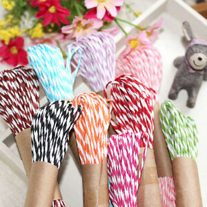 Twisted Paper Twine 10M DIY Craft String wedding party colour gift wrap ribbo_cd