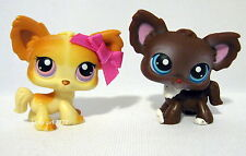 Both *NEW* Littlest Pet Shop CHIHUAHUAS Puppy Dogs 96 219 HARD 2 FIND ~ FREE SHP
