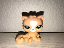 Littlest Pet Shop Persian Cat Orange Lps