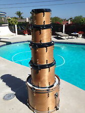 Custom One of a Kind Drumset by Ross Garfield of Drum Doctors with DW mounts