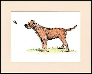 BORDER TERRIER AND BUTTERFLY CHARMING DOG PRINT MOUNTED READY TO FRAME