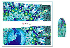Green Peacock Feather Nail Art Water Transfer Decal UV Acrylic Polish Design
