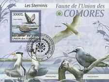 Timbre Oiseaux Comores BF202 o année 2009 lot 21391 - cote : 21 €