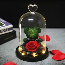 LED Eternal Rose Dome Glass Preserved Immortal Bear Doll Flower Valentines Gifts