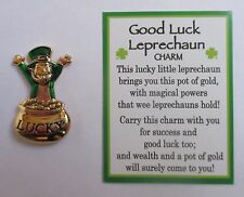 d Good Luck Leprechaun Ganz Lucky pot of Gold Pocket Token Charm wealth success