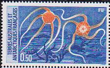 FSAT French Antarctic 1987 Marine Life #125 TAAF Y 122