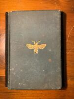 HTF 1891 Illustrated Bugs Insects Insecticides Clarence Weed Entomology Farming