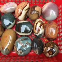 Natural ocean jasper stone Quartz crystal Specimen healing 1lb 2-6pcs