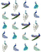 Peacock  Waterslide Nail Decals/Nail Art