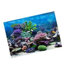 Aquarium, Fish Tank Background Poster Coral Decorative Wallpaper 61x30cm