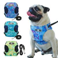 Luxurious Summer Reflective Dog Harness & Leash Lead Set Comfortable Breathable