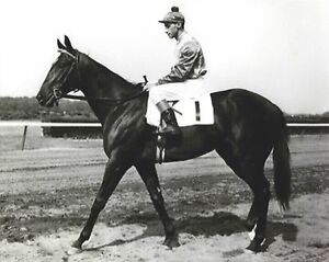 BOLD RULER 8X10 PHOTO HORSE RACING PICTURE JOCKEY