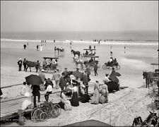 Daytona Beach Florida #1 Photo 8X10 - Horses 1904