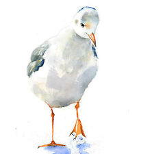 Limited Edition Print of SEAGULL original watercolour by HELEN APRIL ROSE    232