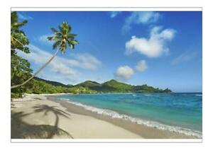 20925676 A1 (84x59cm) Poster Beach impression with coconut palm an der Peti...